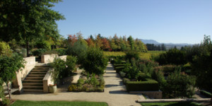 C Donatiello Winery's extensive gardens in Sonoma