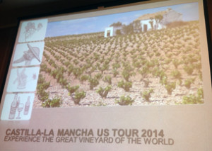 Wines of Castilla-La Mancha US Tour 2014