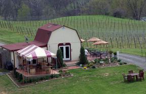Three Fox Vineyards, Virginia