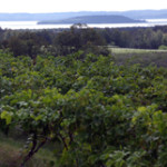 Views from Chateau Chantal on Old Mission Peninsula