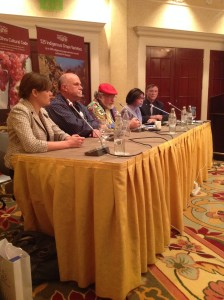 A panel discussion at IWINETC 2014