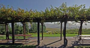 Orfila Winery & Vineyards, California