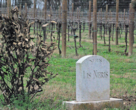 Lis Neris in Friuli, Italy