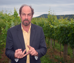 Dave talks about the vineyards