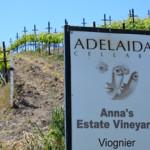 Adelaida Cellar