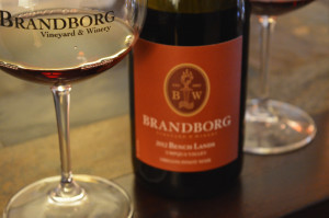 Brandborg Vineyards in Elkton, OR
