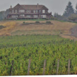 Youngberg Hill Vineyards and Inn in Willamette Valley