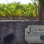 Caymus Vineyards in Napa