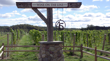 45 North Winery