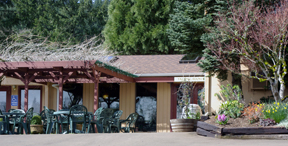 Erath Winery Tasting Room
