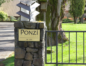 Ponzi Vineyards